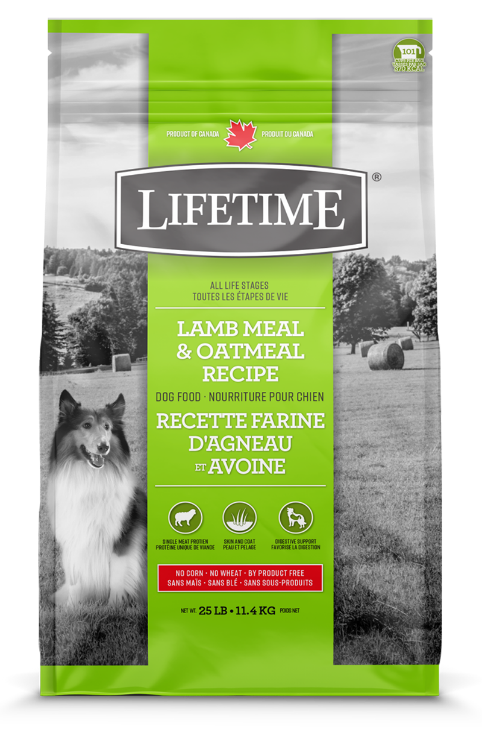 lamb_oatmeal_dog