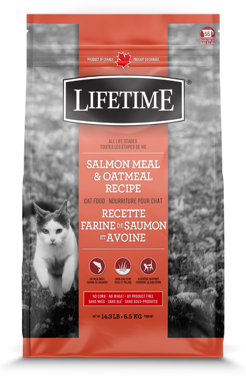 salmon_oatmeal_cat